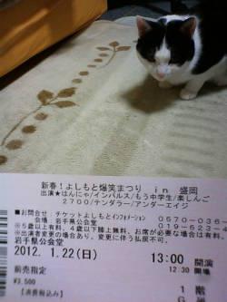 チケットとハナ