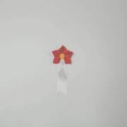 星形1号 赤